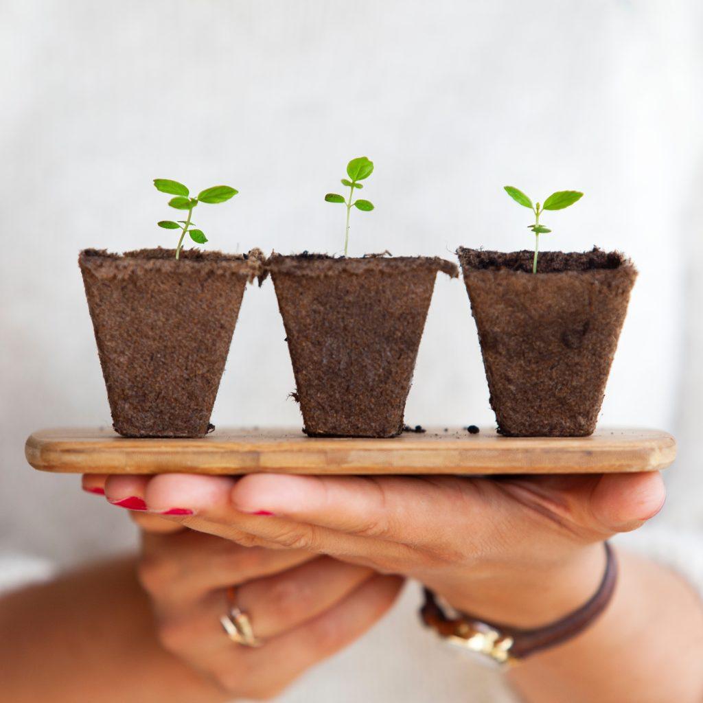 Nachhaltigkeit- Alles beginnt mit dir