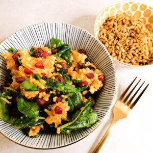 bunter Wohlfühl- Hirsesalat mit crunchy Curry Sonnenblumenkernen